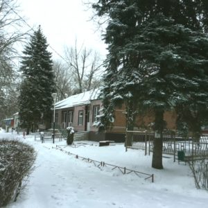 Rodnik Winter2