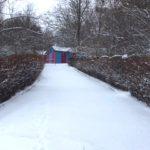 Rodnik Winter6